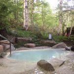 竹は長野県では少なく、中津川、岐阜県でよくみられるようになりました。中央本線