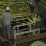 熱利用に供する竹燃料の調達